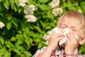 Allergy cases increase in children due to climate change
